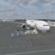 New Flight Simulator FSX 2018