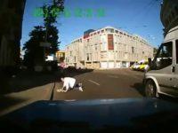Car crash compilation Falling Out of Cars thumb16835