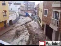 Flood Cars thumb2732