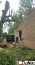 Chain Saw Safety Vuutube thumb1238