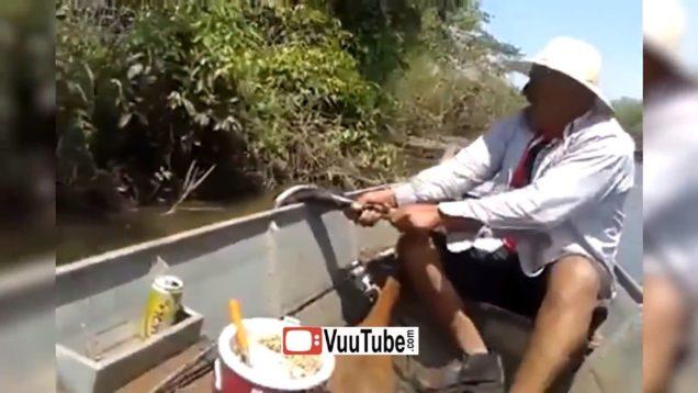 Boat Tour in Brazil thumb1149